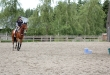 Phoenix Internationalé Dressage & Show Jumpers