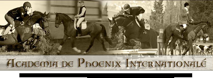 Phoenix Internationale